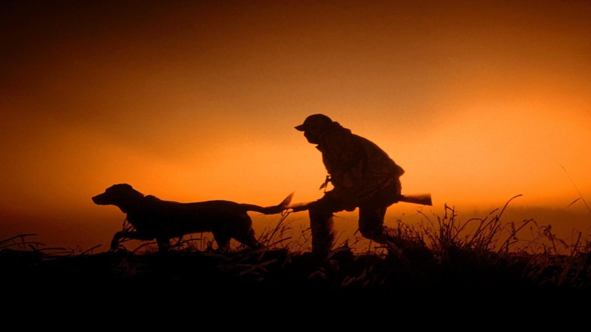 В Тамбовской области продлен запрет на занятия охотой на 18 территориях