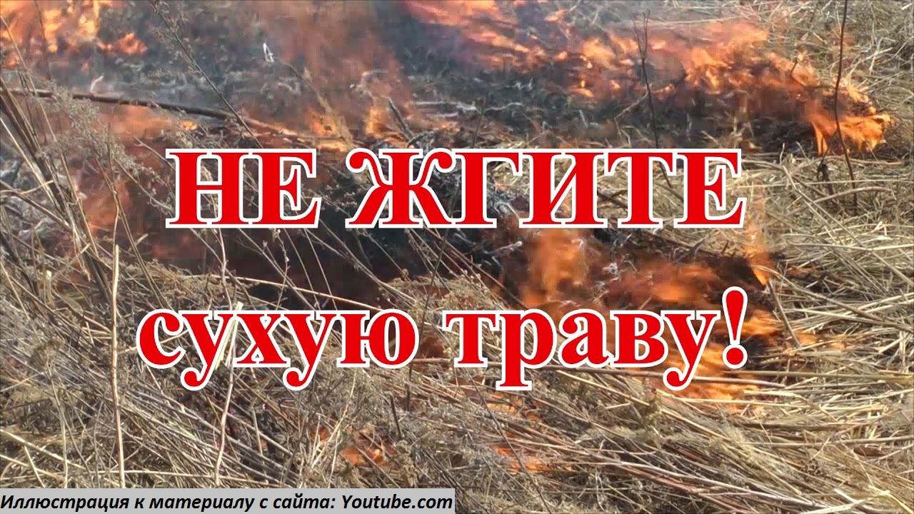 Особый противопожарный режим введен в регионе на 20 дней
